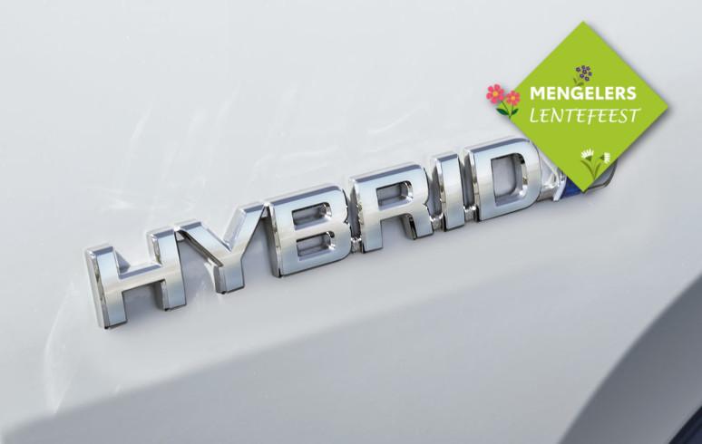 Mengelers Lentefeest Hybride Upgrade